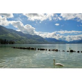 Lakes of Bourget, Aiguebelette, Annecy, Léman, via Chamonix
